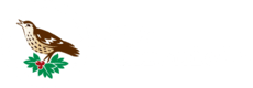 The WBA Chronicle