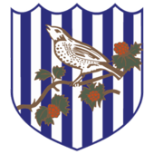 west brom albion fc old logo